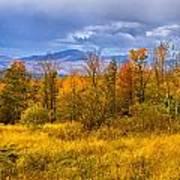 New Hampshire Fall Color Part Deux Art Print
