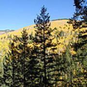 New Mexico Series - Autumn On The Mountain II Art Print