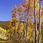 New Mexico Series - Autumn On The Mountain Art Print