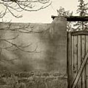 New Mexico Series - Doorway II Black And White Art Print