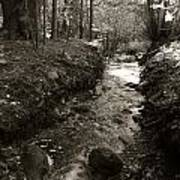 New Mexico Series - Late Winter Streambed Art Print