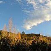 New Mexico Series - Santa Fe Landscape Autumn Art Print