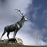 New Orleans Stag Statue Art Print
