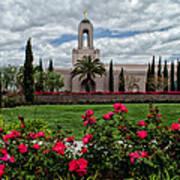 Newport Beach Temple Roses Art Print