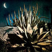 Night At The Desert's Edge Art Print