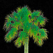 Night Of The Green Palm Art Print