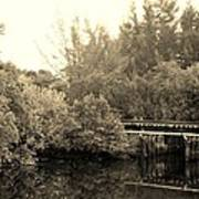 North Fork River In Sepia Art Print