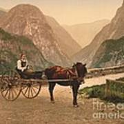 Norwegian Carriage Art Print