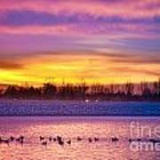 November Lagerman Reservoir Sunrise  Art Print by James BO  Insogna