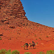 Nubian Camel Rider Art Print by Tony Beck