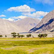 Nubra Valley Ladakh Art Print