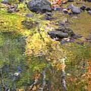 October Colors Reflected Art Print