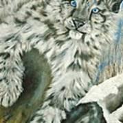 Ol Blue Eyes Art Print