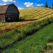 Old Barn In A Field Art Print