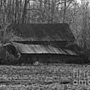 Old Barn Out Back Art Print