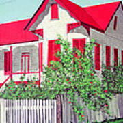 Old Belizean Home Art Print