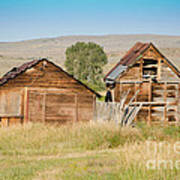 Old Building Woodruff Utah Art Print