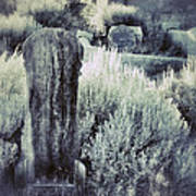 Old Cemetery On A Hill Art Print
