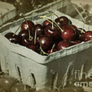 Old Fashioned Cherries Art Print