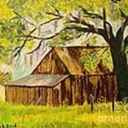 Old Florida Farm Shed Art Print by Bill Hubbard