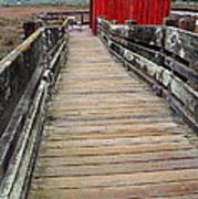 Old Red Shack At The End Of The Walkway Art Print by Wingsdomain Art and Photography