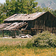 Old Saisia Barn In Spring Art Print