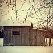 Old Shed In Wintertime Art Print by Sandra Cunningham