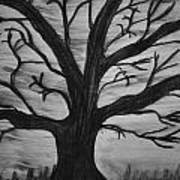 Old Tree With No Leaves Art Print