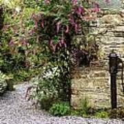 Old Water Pump, Ram House Garden, Co Art Print