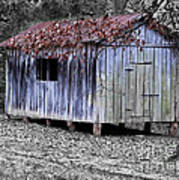 Old Weathered Shed Art Print