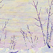 Opalescent Winter Art Print by Sharon Gill
