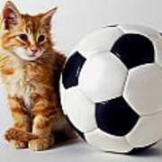 Orange And White Kitten With Soccor Ball Art Print