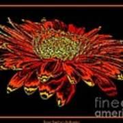 Orange Gerbera Daisy With Chrome Effect Art Print