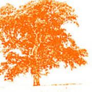 Orange Oak Art Print