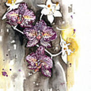 Orchid 13 Elena Yakubovich Art Print