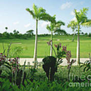 Orchids At Iberostar Golf Course In Punta Cana Dr Art Print
