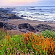 Oregon Coast Wildflowers Art Print