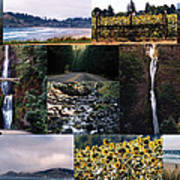 Oregon Collage From Sept 11 Pics Art Print
