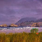 Oregon Seascape Art Print by David Patterson