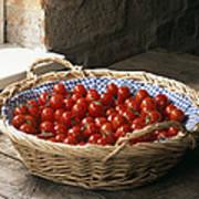 Organic Cherry Tomatoes Art Print