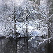 Our Pond In The Snow Art Print