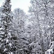 Over Coat Of Snow Art Print