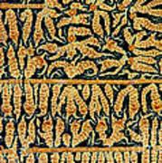 Oxidized Vitamin C Art Print