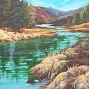 Pack River Color Art Print