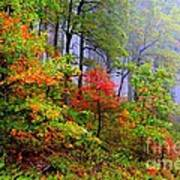Painted Autumn Art Print by Carolyn Wright