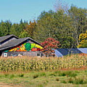 Painted Barn Art Print