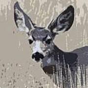Painted Muley Art Print