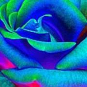 Painted Rose 2 Art Print