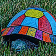 Painted Turtle Sprinkler Art Print