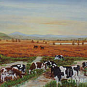 Painting Cows On Cors Caron Tregaron Art Print